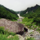 priroda 3
