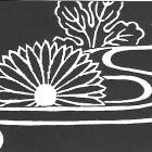 Kiku-sui - chryzantéma na vodě