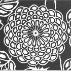 Yae-giku - plnokvětá chryzantéma